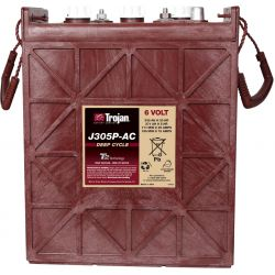 Battery Trojan J305P-AC